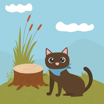 Katze der karikatur