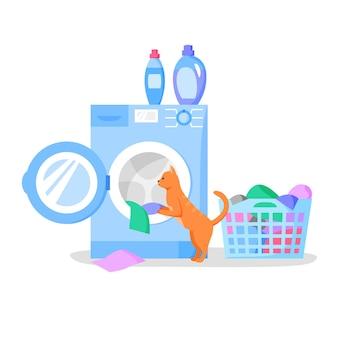 Katze, die im wäschekorb der offenen waschmaschine mit kleiderflaschen mit flüssigwaschmitteln sucht