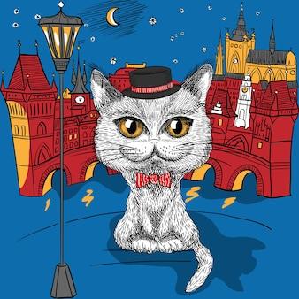 Katze in prag, prager burg und karlsbrücke