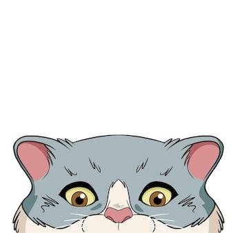 Katze späht über die kante