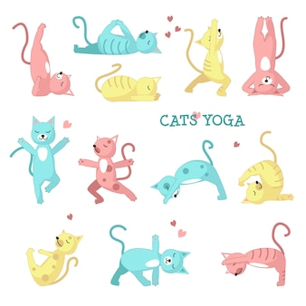 Katzen, die yoga-posen machen