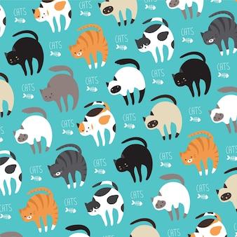 Katzen in