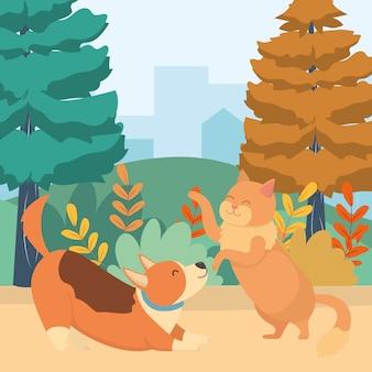 Katzen- und hundekarikatur