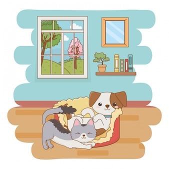 Katzen- und hundekarikaturclipartillustration