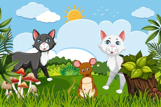 Katzen und maus dschungel-szene