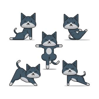 Katzen yoga position
