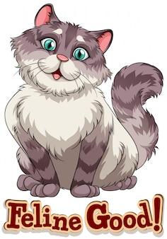Katzenartig
