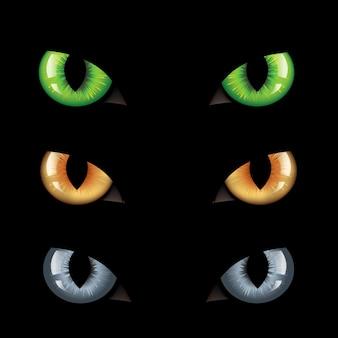 Katzenaugen in der dunkelheit