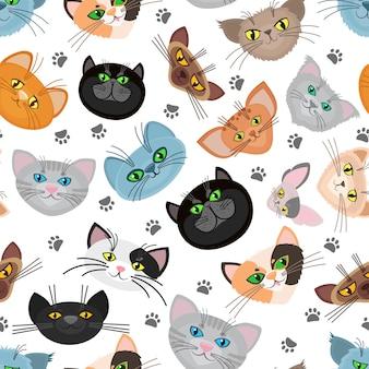 Katzengesichtshintergrund mit katzenpfoten. katzen schnauze und hinterpfote von katzen. illustration