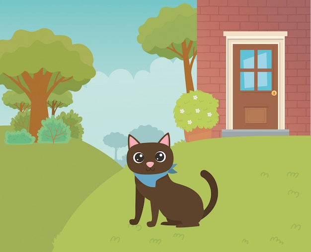 Katzenkarikaturdesign-vektorillustrator