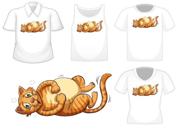 Katzenkarikaturfigur mit satz von verschiedenen hemden lokalisiert auf weiß