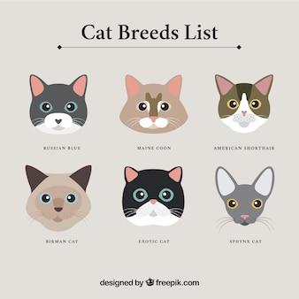 Katzenrassen avatare