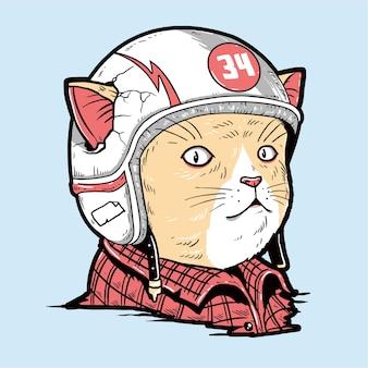 Katzenrennfahrer