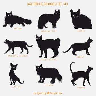 Katzenzucht-silhouetten-satz