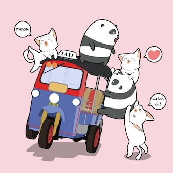 Kawaii pandas und katzen mit motordreirad