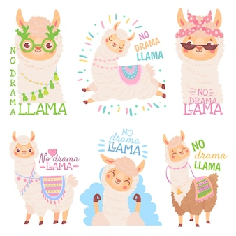 Kein drama lama. lustige lamas oder niedliche alpakas zitieren, glückliches mexikanisches alpaka-vektorillustrationsset. sammlung entzückender flauschiger südamerikanischer oder anden-haustiere. bündel amüsanter crias.