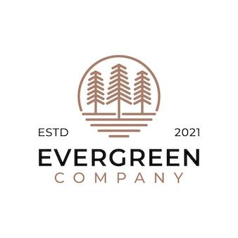 Kiefer immergrün oder nadelbaum zeder nadelzypresse lärche, kiefernwald vintage linie kunst logo