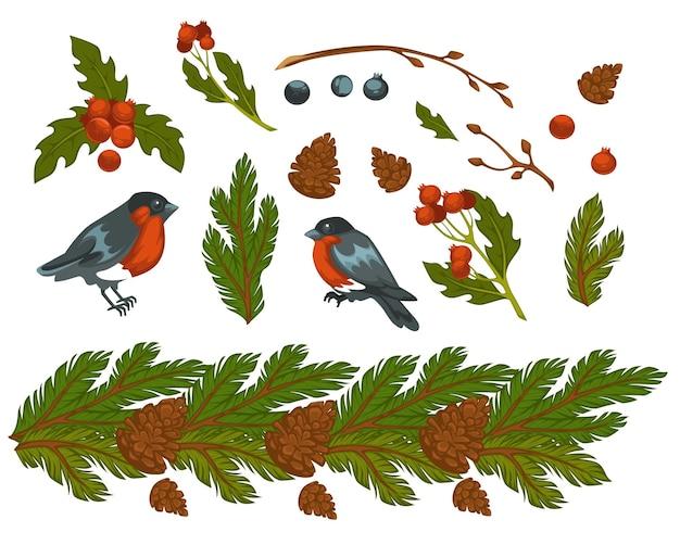 Kieferzweige mit immergrünen nadeln und zapfen, gimpelvögel und mistel. weihnachtsfeier, traditionelle symbole von weihnachten und winterferien. birdie und zweig. vektor im flachen stil