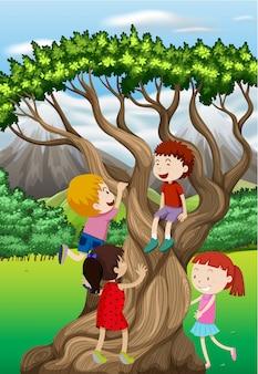 Kinder, die baum im park klettern