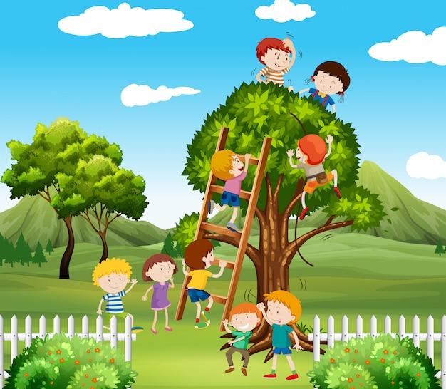 Kinder, die oben baum im park klettern