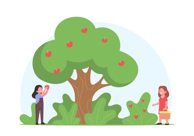 Kinder pflücken äpfel und erdbeeren zum korb im obstgarten. gärtnerfiguren für kleine mädchen, die früchte ernten
