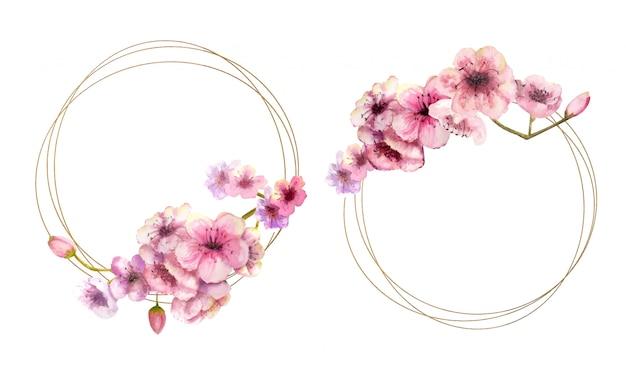 Kirschblüte, kirschblüte-niederlassung mit rosa blumen auf goldrahmen und auf weiß lokalisiert. bild des frühlings. 2 bilder mit aquarellblumen. illustration.