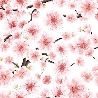 Kirschblüte, sakura-blume