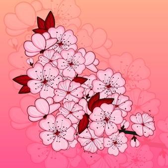 Kirschblüten blumen