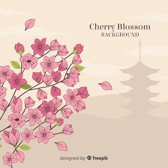 Kirschblütenbaum hintergrund