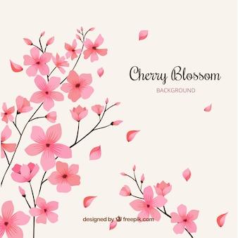 Kirschblütenhintergrund mit hand gezeichneten blumen