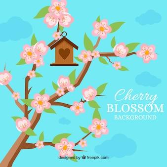 Kirschblütenhintergrund mit vogelhaus