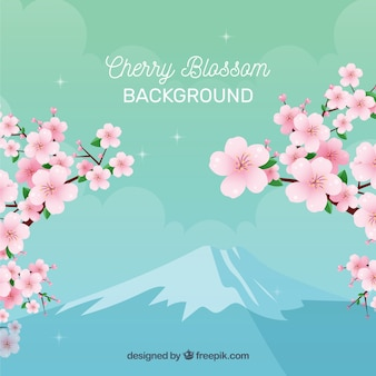 Kirschblüte backgorund in der flachen Art