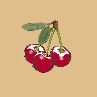 Kirsche im vintage-stil. farbige vektorabbildung