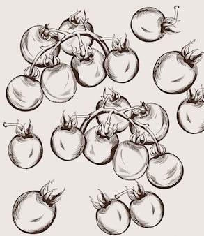 Kirschtomaten linie kunst. herbst herbst ernte illustrationen