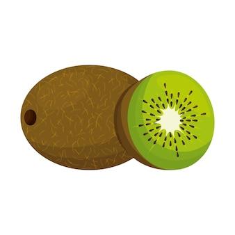 Kiwi-frucht-vektor