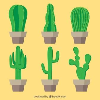 Klassischer kaktus mit flachem design