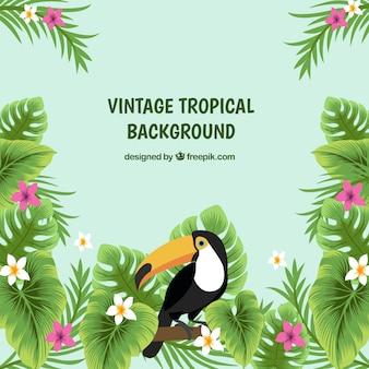 Klassischer tropischer hintergrund mit weinleseart