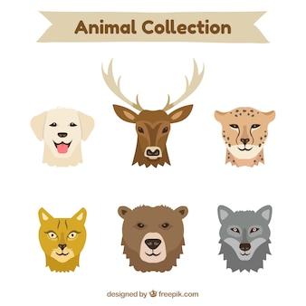 Klassisches set von tiergesichtern