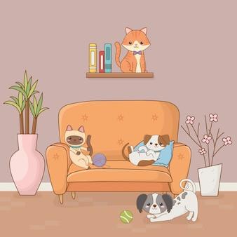 Kleine hunde- und katzenmaskottchen im hausraum