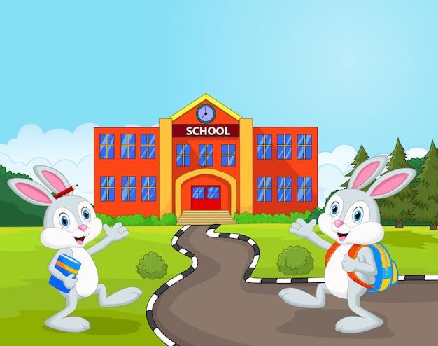 Kleine kaninchen gehen zur schule