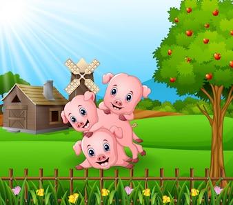 Kleine Schweine der Karikatur drei, die im Bauernhofhintergrund spielen