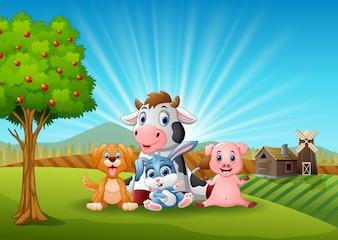 Kleine Tiere Bauernhof am Morgen