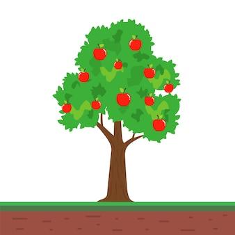 Kleiner baum mit apfelfrüchten. fruchtbarer apfelbaum im garten. flache vektorillustration.
