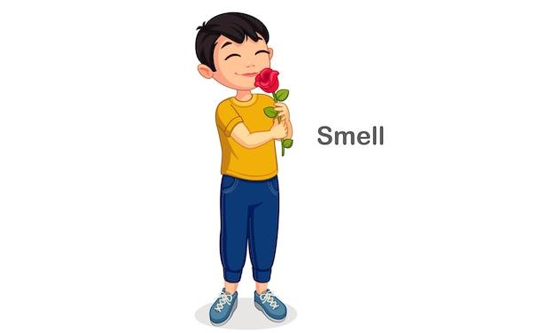 Kleiner junge, der eine blume riecht, die einen geruchssinn zeigt