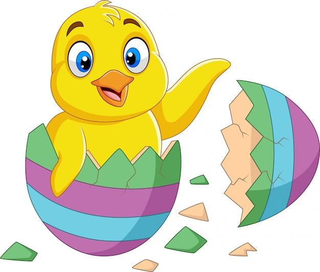Kleines küken der karikatur aus einem ei geschlüpft