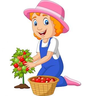 Kleines mädchen der karikatur, das tomaten erntet
