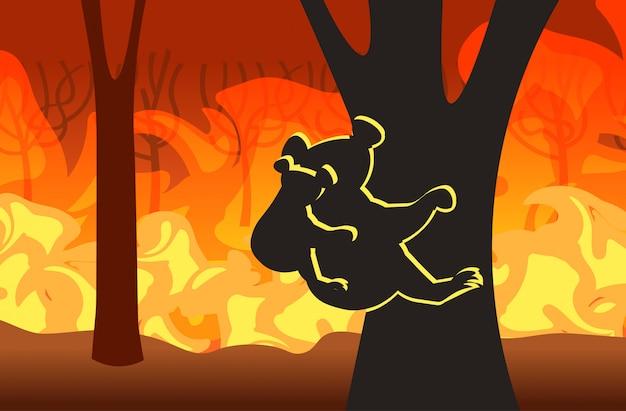 Koala mit den joey schattenbildern, die auf baumwaldbränden in australien-tieren sterben in den intensiven orange horizontalen flammen des verheerenden naturkatastrophenkonzeptes des buschfeuers sitzen
