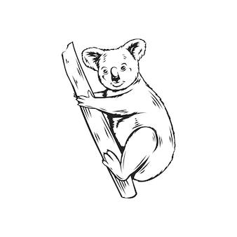 Koala tierikone. australische bärenumrissillustration für zoo
