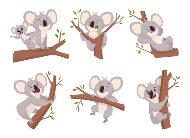 Koalabär. wildes niedliches pelziges tier aus australien zoo zeichen cartoon dusche symbole sammlung.