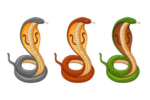 König kobra schlange set naag panchami festival